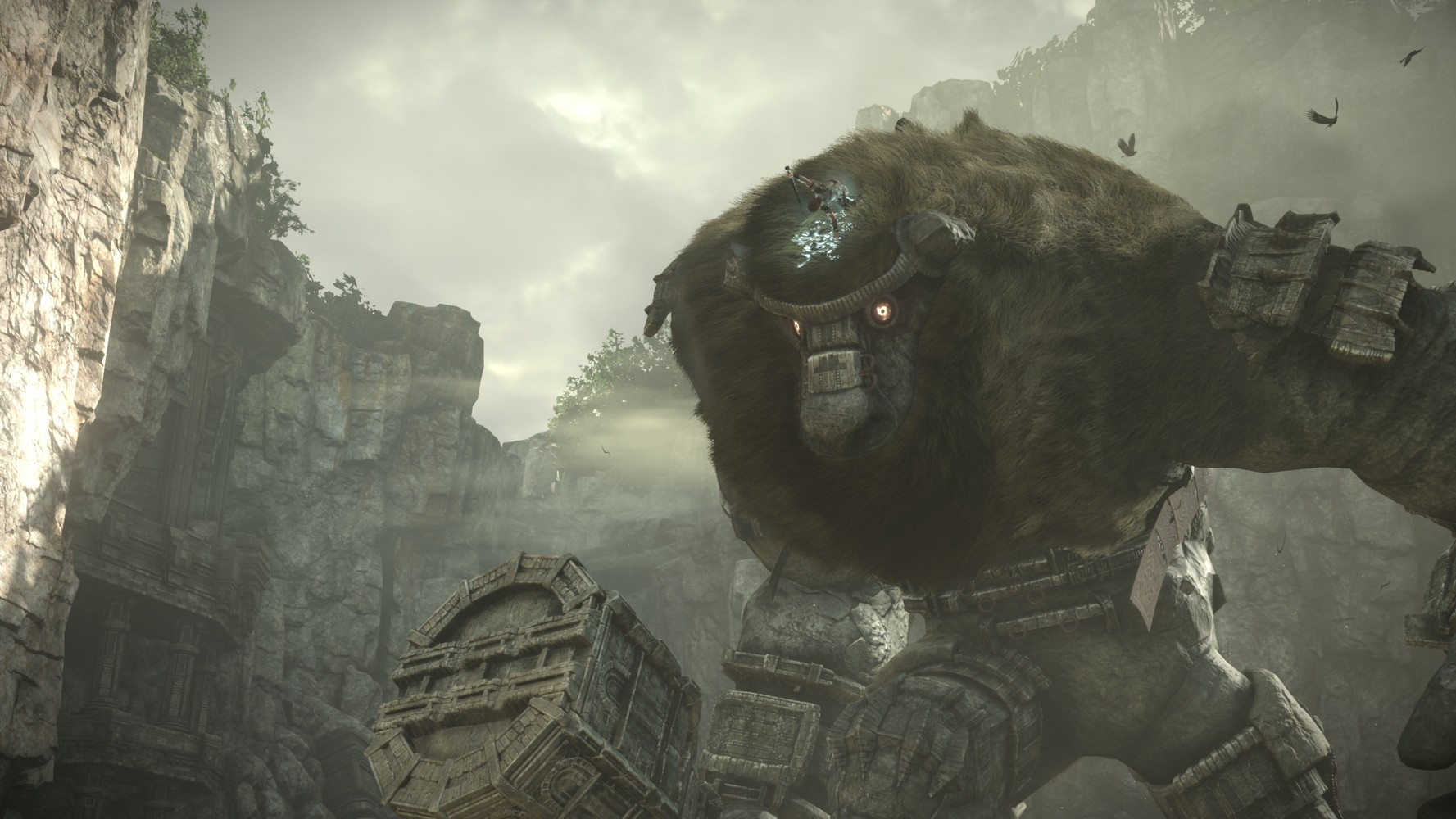 E3 2017: Shadow of the Colossus , trailer a sorpresa alla conferenza Sony
