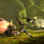 monster hunter 4 06