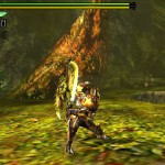 monster hunter 4 17