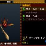 monster hunter 4 19