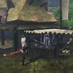 toukiden the age of demons 14