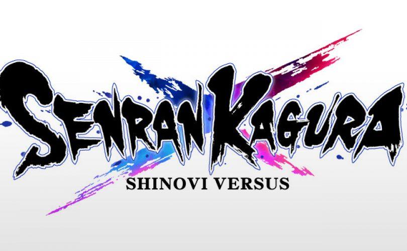 senran kagura shinovi versus cover