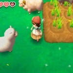 story of seasons 06