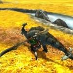 monster hunter 4 ultimate 20