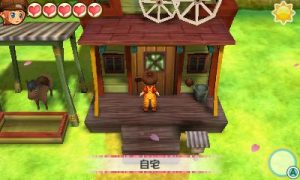 Story of Seasons: Trio of Town