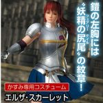 DEAD OR ALIVE 5: Last Round x Fairy Tail