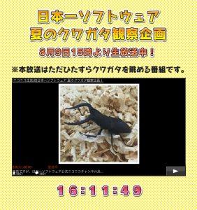 nippon-ichi-software-countdown-scarabeo