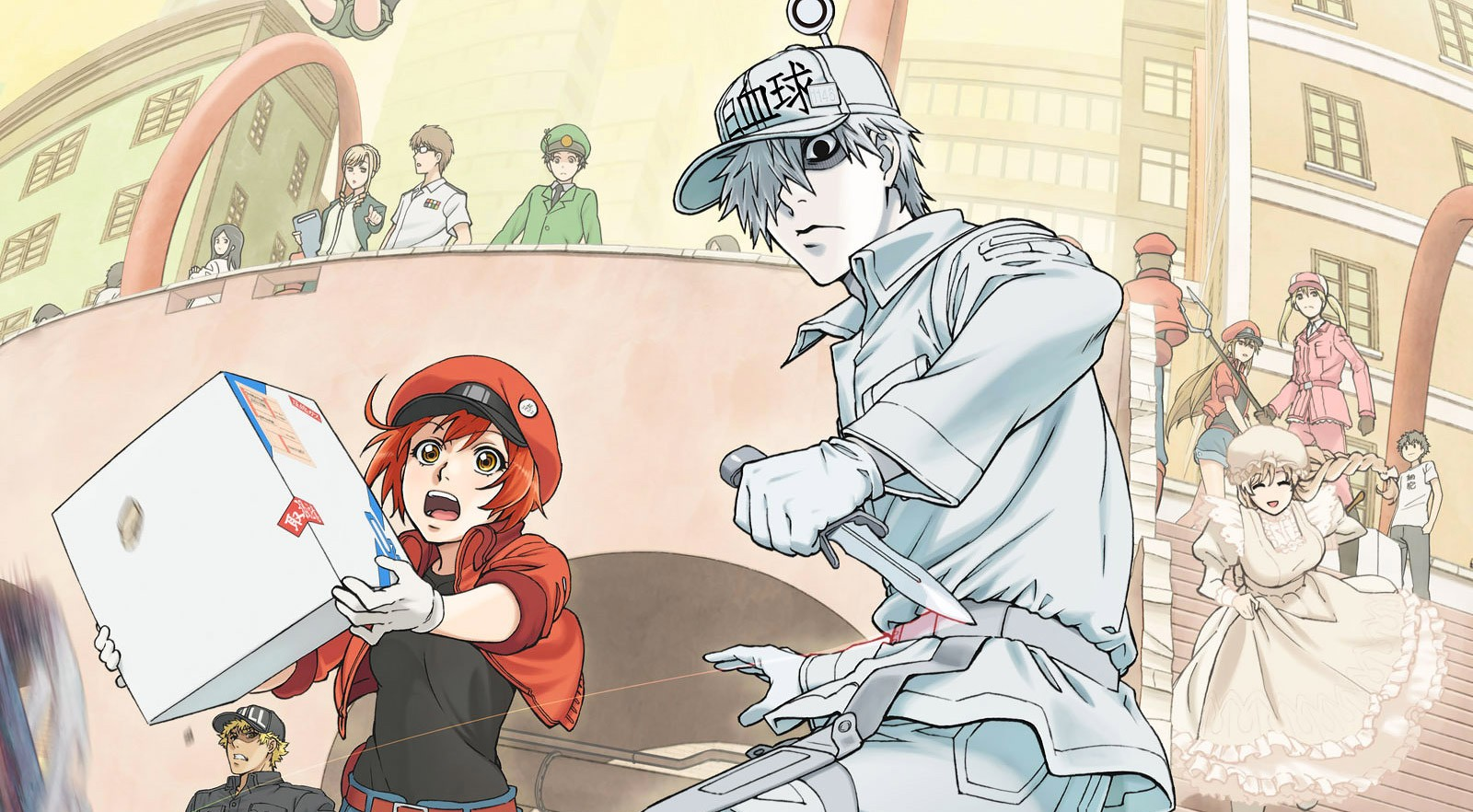 Hataraku Saibou (Cells at Work / Lavori in Corpo)