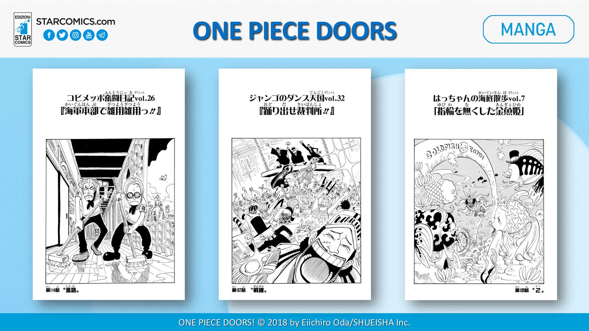 one piece doors