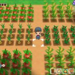 Story of Seasons: Reunion in Mineral Town