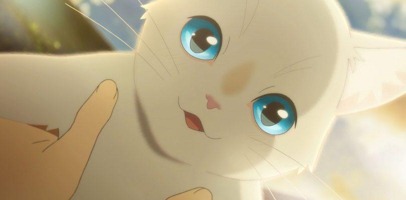 Il film anime A Whisker Away arriva su Netflix in tutto il mondo