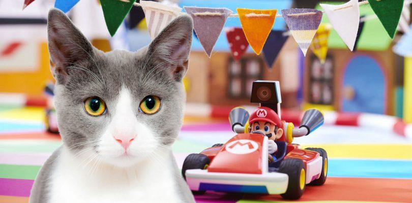 Mario Kart Live: Home Circuit è il gioco più amato (e odiato) dai gatti