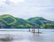 Giappone: enorme successo per la raccolta fondi destinata al torii di Tsushima
