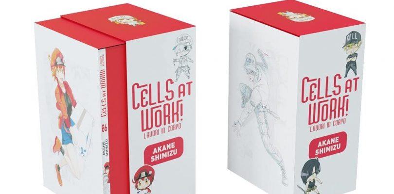 CELLS AT WORK! giunge a conclusione, tutti i dettagli sul volume 6